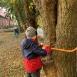 Chłopiec w granatowo-czerwonej kurtce wiąże wstążkę na pniu drzewa.